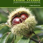 Tree Walk Map Front Cover