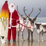Fistral reindeer 2