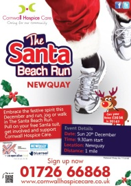 2014 Fun Run Poster