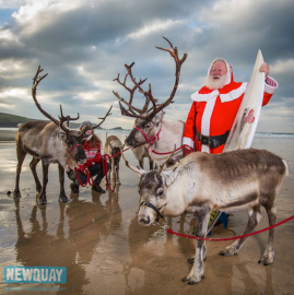 reindeer and father xmas 2014