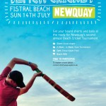 beach cricket poster 2013
